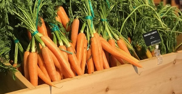 Bunched Carrots (cropped)